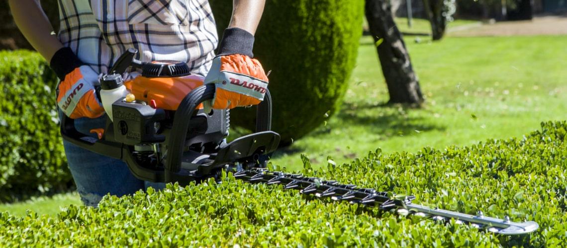 ¿Cómo podar los setos para que decoren tu jardín? Descubre el arte topiaria.