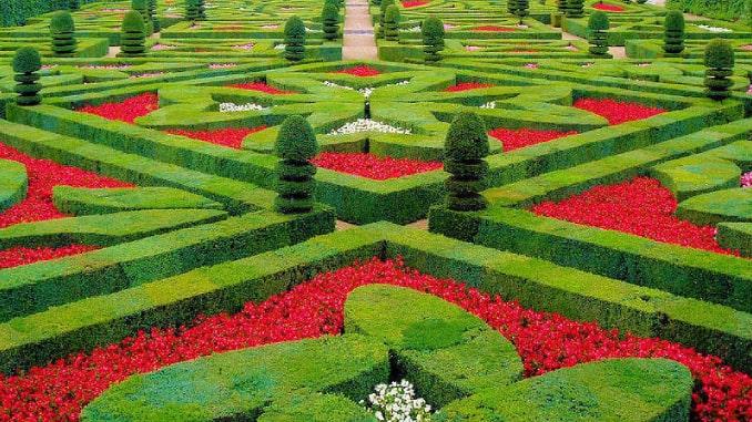jardineria-ornamental
