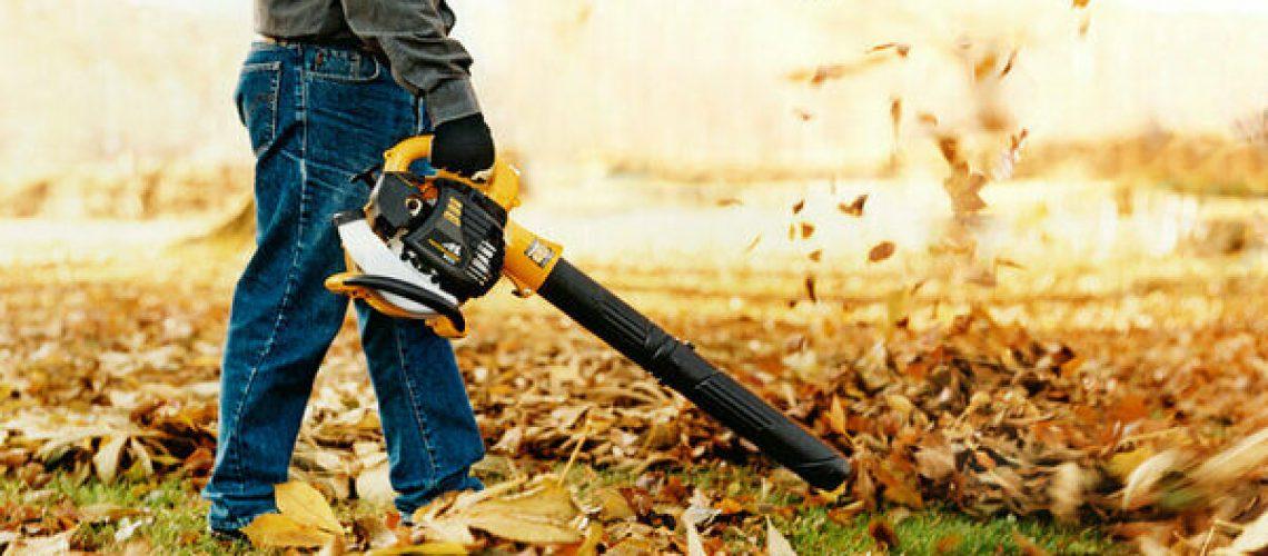 Cómo comprar el soplador de hojas perfecto para ti